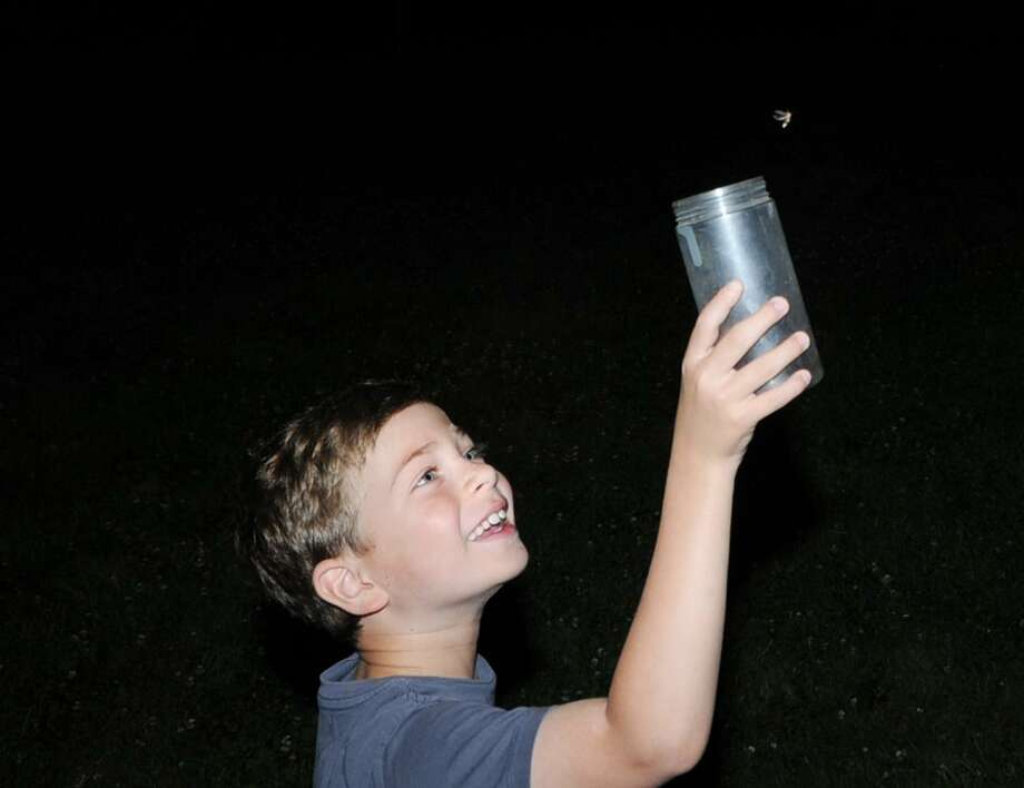 "Audubon Greenwich will host a ""Firefly Night"" at 8:30 p.m. Friday. There will be a short indoor introduction, followed by a walk at dusk into the meadow to catch a glimpse of hundreds of fireflies on the grounds at 613 Riversville Road. Bring your own jar with hole-punched lid or borrow one from Audubon. All are ages welcome. The cost is $5 for members, $8 for nonmembers. RSVP to Eli at 203-930-1349 or eschaffer@audubon.org. Photo: File / Bob Luckey / Bob Luckey / Greenwich Time"