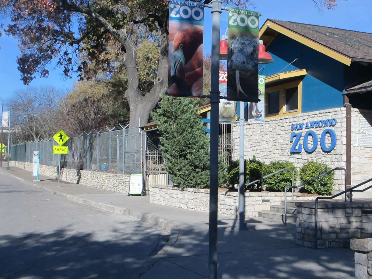 Pecos Fence Co. Inc. installed this fence at San Antonio Zoo.