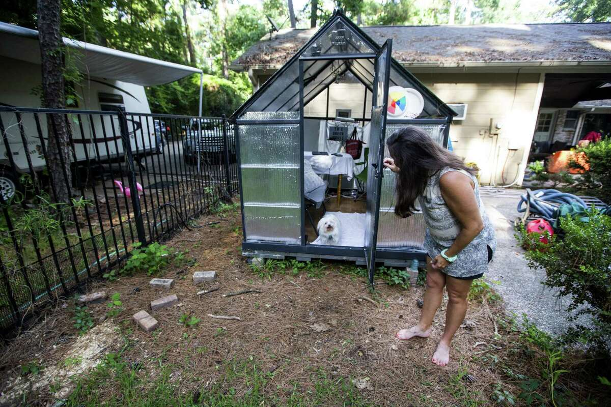 Amy Slaughter lets her dog out of a greenhouse that she has converted into an office, outside her flood-damaged home, on Thursday, June 28, 2018, in Kingwood. The Slaughter family is in favor of a project to dredge a large sandbar in the San Jacinto River, to help alleviate flooding in Kingwood. They are still recovering from the floodwaters from Hurricane Harvey, where they had 52 inches of water inside their home.