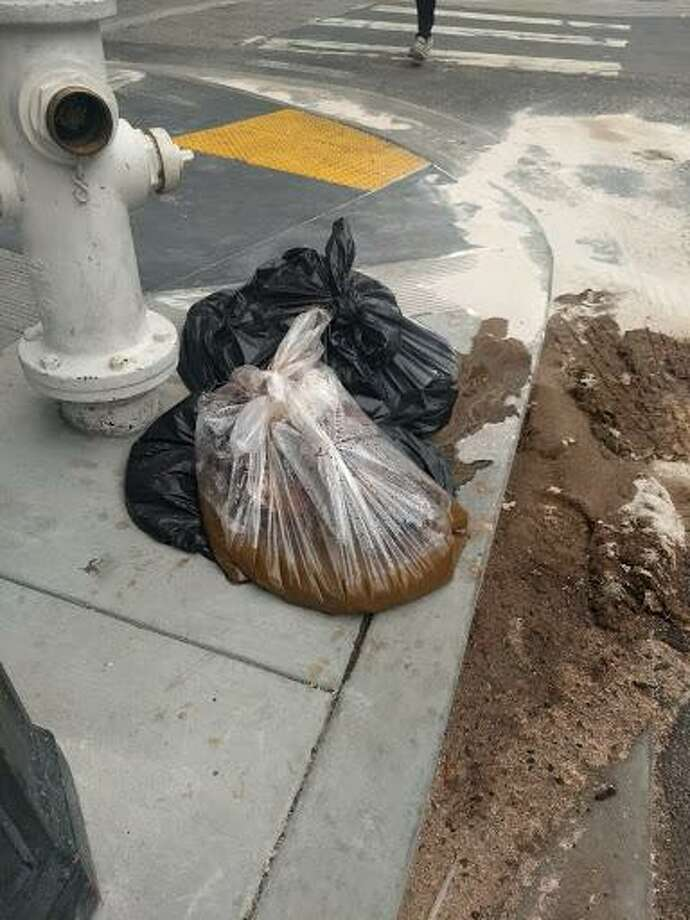 Human waste on the corner of Polk and Cedar streets on June 30, 2018. Photo: Reddit / U/tusi2