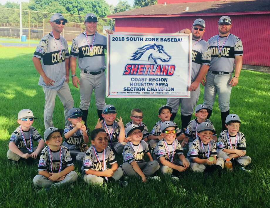 The Conroe Area Youth Baseball (CAYB) Conroe 6U Gold All-Star team earned a spot in the Pony League World Series, set to be played July 10-15 in Youngsville, La. Photo: Submitted Photo