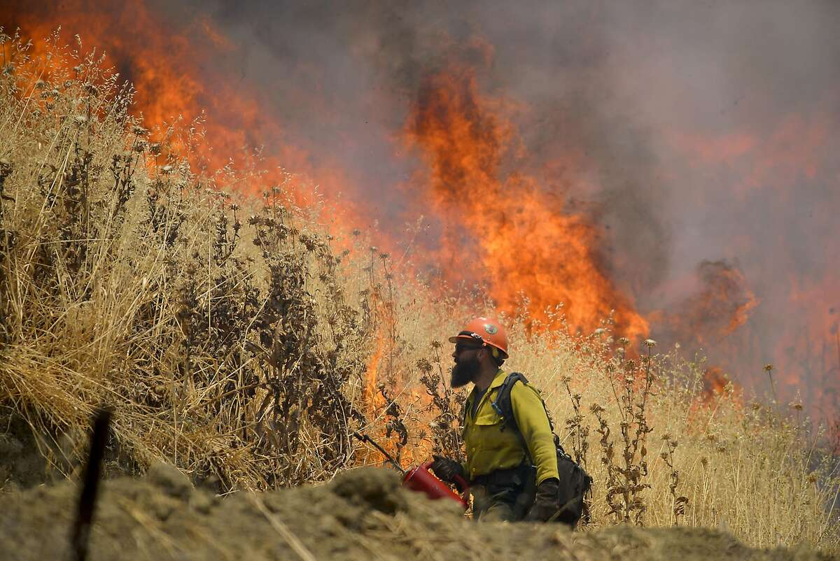 Hot Shot crews from Mendocino use backfires to help contain the County Fire along Highway 129 near Lake Berryessa in Yolo County, California, Tuesday, July 3, 2018.