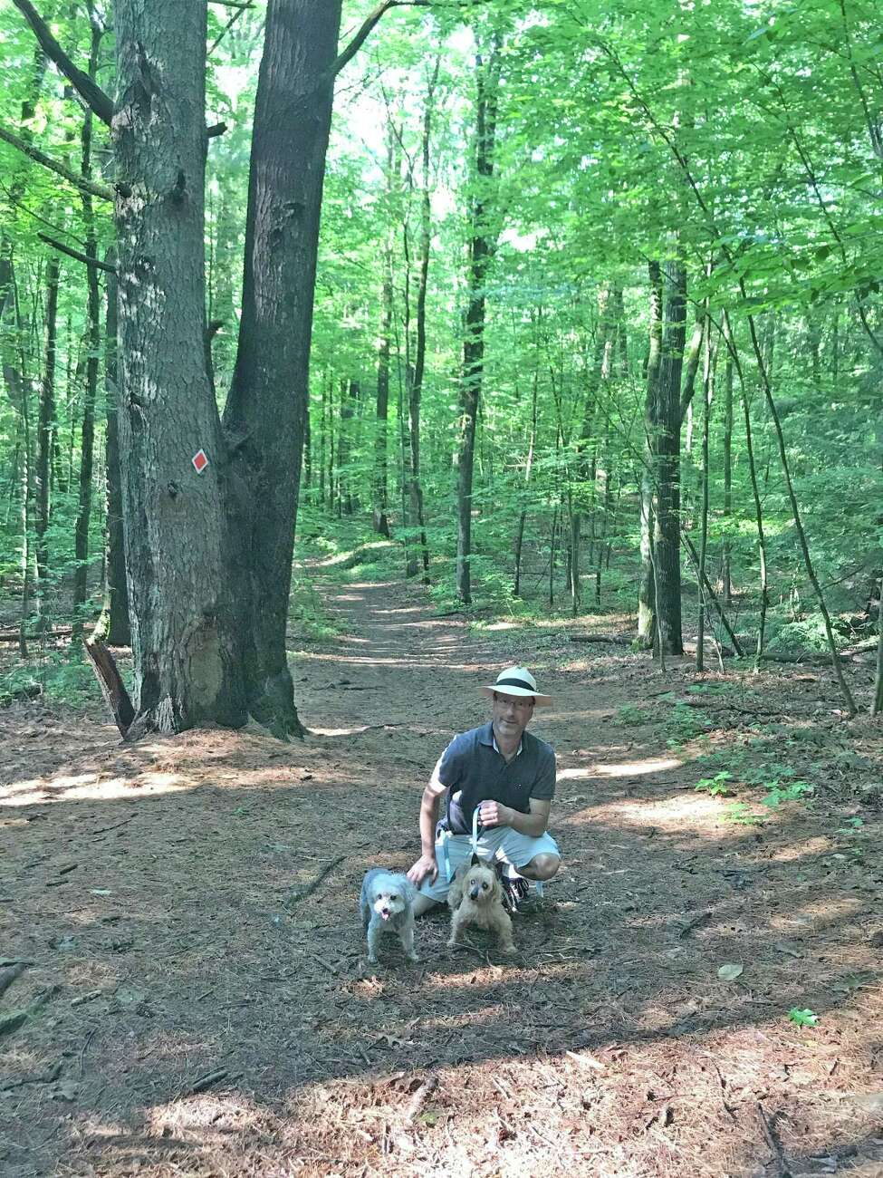 David Kalish of Halfmoon, a former Associated Press reporter, gathered the facts and round up support to help keep Saratoga County from performing logging operations in Kinns Road Park. He walks the park daily with dogs Luna and Tilly.