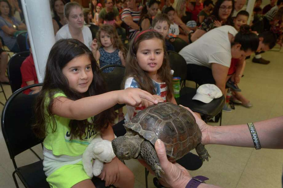 Norwalk residents Corinne Feithery and AJ Wennerstrom, both 8, pet Darwin the Gopher Tortoise as The East Norwalk Library opened Wednesday, July 4th, 2018, for a very special program from the Beardsley Zoo at the library in Norwalk, Conn. The presentation included appearances from a Tiger Salamander, and African Millipede, a Ball Python, a Gopher Tortoise and a chinchilla. Photo: Erik Trautmann / Hearst Connecticut Media / Norwalk Hour