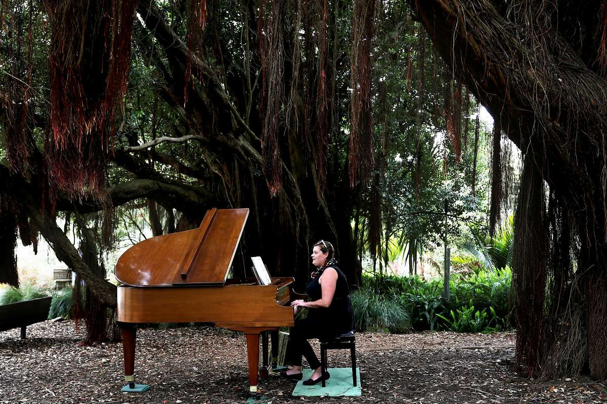 At Flower Piano, let the amateurs rein