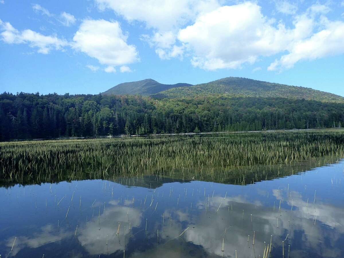 White Lily Pond in the Adirondacks. (Phil Brown/Adirondack Explorer)