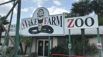 The venerable Snake Farm on I-35 at New Braunfels has been in business since 1967.