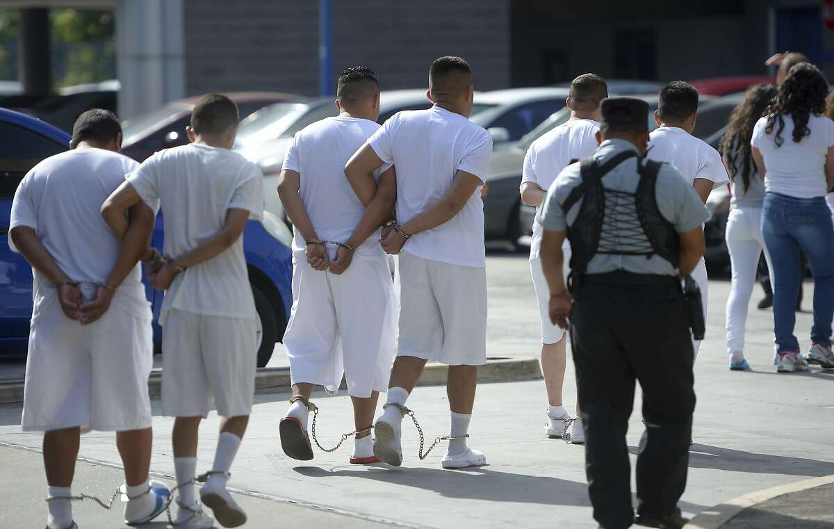 A group from the Barrio 18 gang walk in shackles to the San Salvador Justice Center in El Salvador.