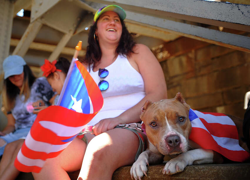 Patricia Rosa, of Bridgeport, and her dog Prada watch the Annual Puerto Rican Day Parade on Park Avenue in Bridgeport, Conn. on Sunday, July 8, 2018.