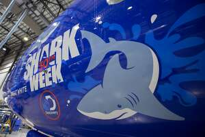 Southwest Airlines launched its Shark Week fleet on Monday to celebrate Discovery Channel's 30th anniversary of the popular TV event. Each of the five aircraft displays a species of shark often showcased in a Shark Week episode. The fleet consists of the great white shark, hammerhead shark, tiger shark, bull shark and mako shark. The planes will fly throughout Southwest's network through Aug. 31.