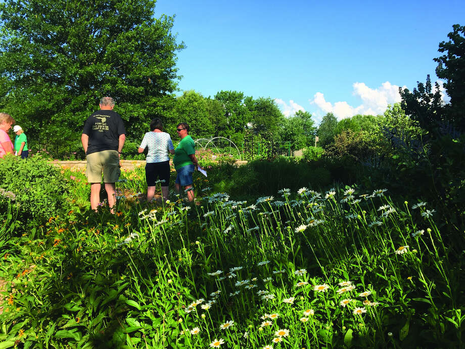 Visitors to the Open Gate Garden Open House look over the greenery Thursday night in Maryville's Drost Park. Master Gardeners from the University of Illinois Extension were on hand to answer questions about various native flowers and plants.