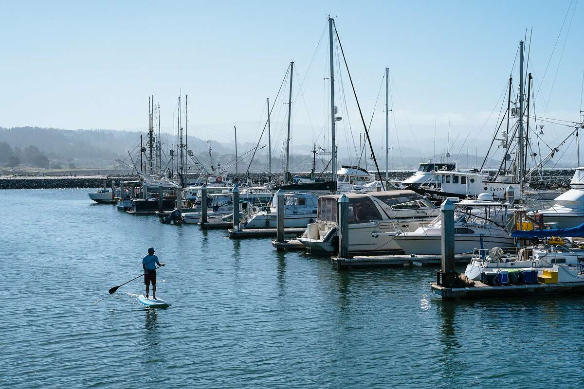 A stand up paddle boarder paddles along the Pillar Point Harbor in Half Moon Bay, Calif., on Sunday, July 8, 2018.