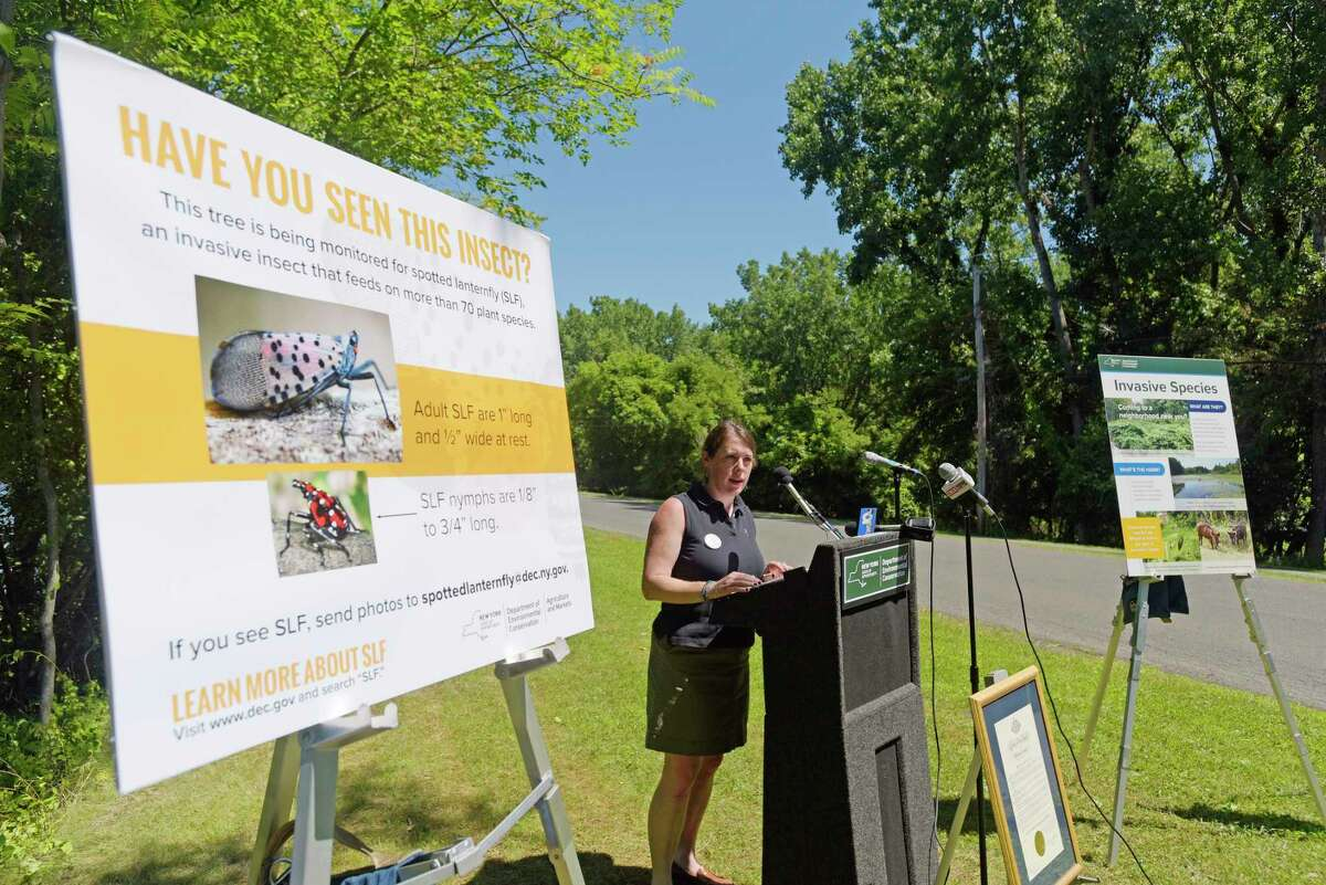 Julie Tighe, DEC chief of staff, talks about invasive species at a press event at Peebles Island State Park on Monday, July 9, 2018, in Waterford, N.Y. The event was put on by New York State DEC, Ag & Markets and Parks to kickoff New YorkOs Invasive Species Awareness Week. (Paul Buckowski/Times Union)