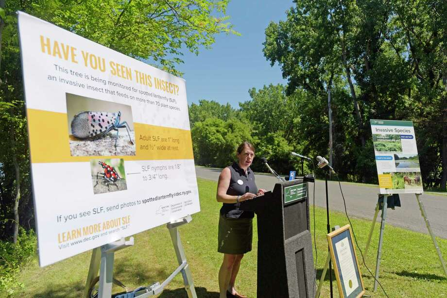 Julie Tighe, DEC chief of staff, talks about invasive species at a press event at Peebles Island State Park on Monday, July 9, 2018, in Waterford, N.Y. The event was put on by New York State DEC, Ag & Markets and Parks to kickoff New YorkOs Invasive Species Awareness Week.   (Paul Buckowski/Times Union) Photo: Paul Buckowski / (Paul Buckowski/Times Union)