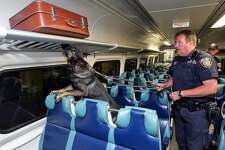 MTA Police K-9 Capt. John Kerwick  drills with his partner Hero, a 4-year-old German shepherd on board a train at Grand Central Terminal.