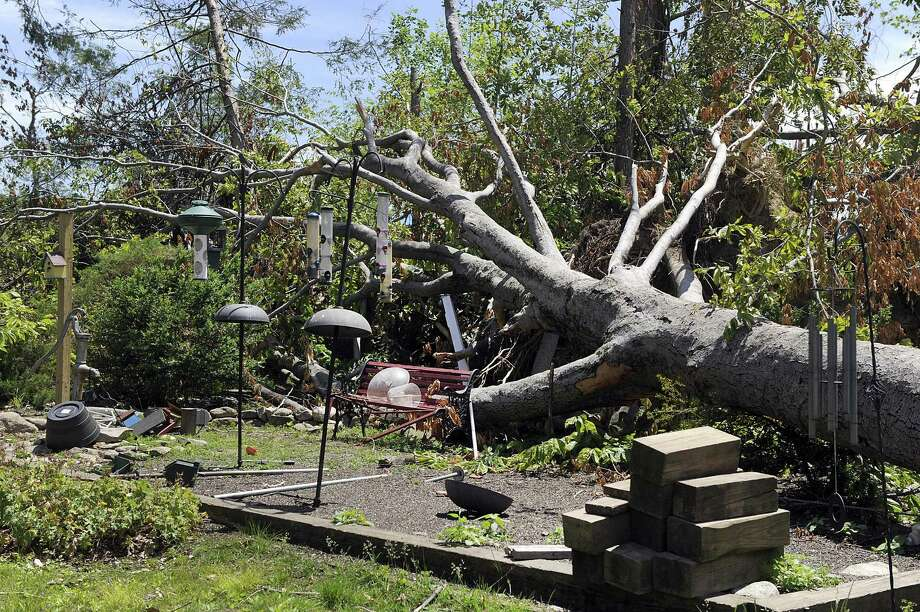 A tree fellinto a garden area on the Murphy prperty on Old Hemlock Road in Brookfield during last month's macroburst. The Federal Emergency Management Agency, Brookfield officials and U.S. Rep. Elizabeth Esty toured areas of Brookfield Monday, June 11, 2018, most heavily damaged. Photo: Carol Kaliff / Hearst Connecticut Media / The News-Times