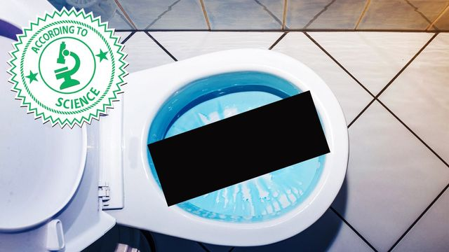 Why Flushing the Toilet With the Cover Up Is Grosser Than You Even Thought Of thumbnail