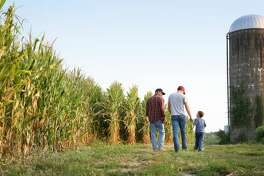 A grandfather, his son and his grandson walk on their Iowa farm.