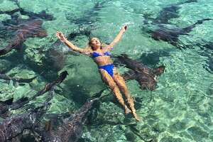 Houston model and Instagram celebrity  Katarina Zarutskie  was swimming among nurse sharks in the Bahamas when one of them took a bite out of her arm.