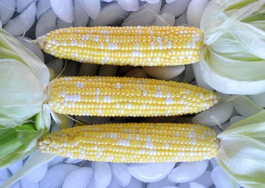 Sweet summer corn is just as home in recipes served cold as it is steaming hot and slathered with butter and salt. Photo: Paul Stephen /San Antonio Express-News