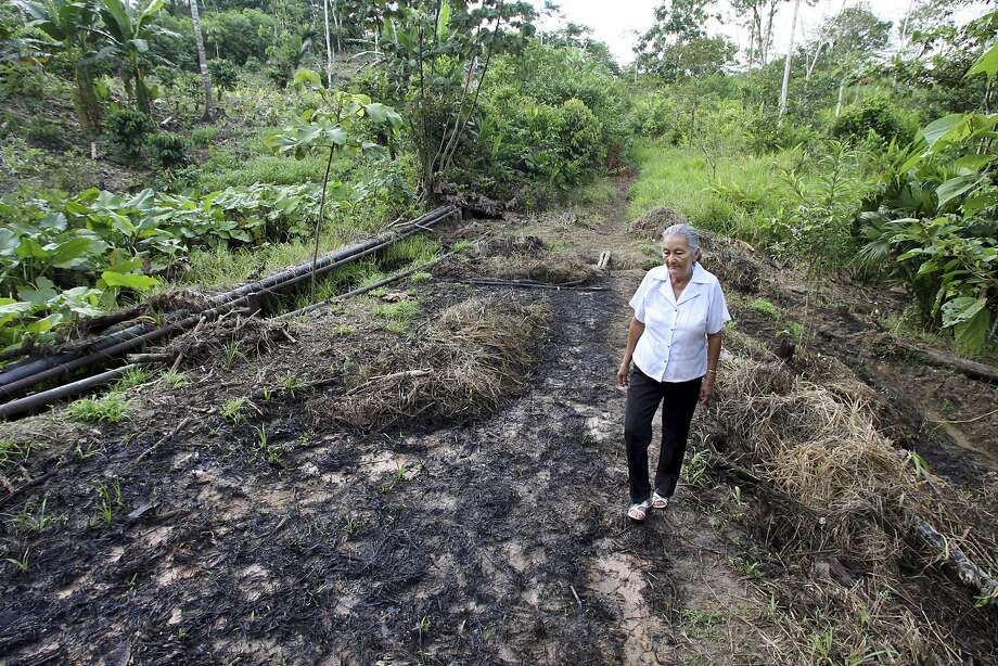 FILE - In this July 30, 2006 file photo, Mariana Jimenez walks on her farm where burst oil pipes contaminated her land earlier in the month near Lago Agrio, in Ecuador's Amazon region. Late Tuesday, July 10, 2018, Ecuador's highest court upheld a $9.5 billion judgment against oil giant Chevron for decades of rainforest damage that harmed indigenous people.  (AP Photo/Lou Dematteis, File) Photo: Lou Dematteis / Associated Press