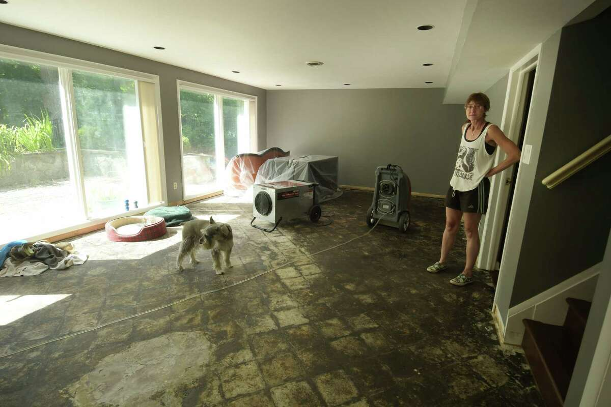 Stephanie Brown in the damaged basement of her home on Marion Avenue, where on July 5th sewage poured out of a toilet in the basement and flooded the space. Photo taken on Thursday, July 12, 2018, in Albany, N.Y. (Paul Buckowski/Times Union)