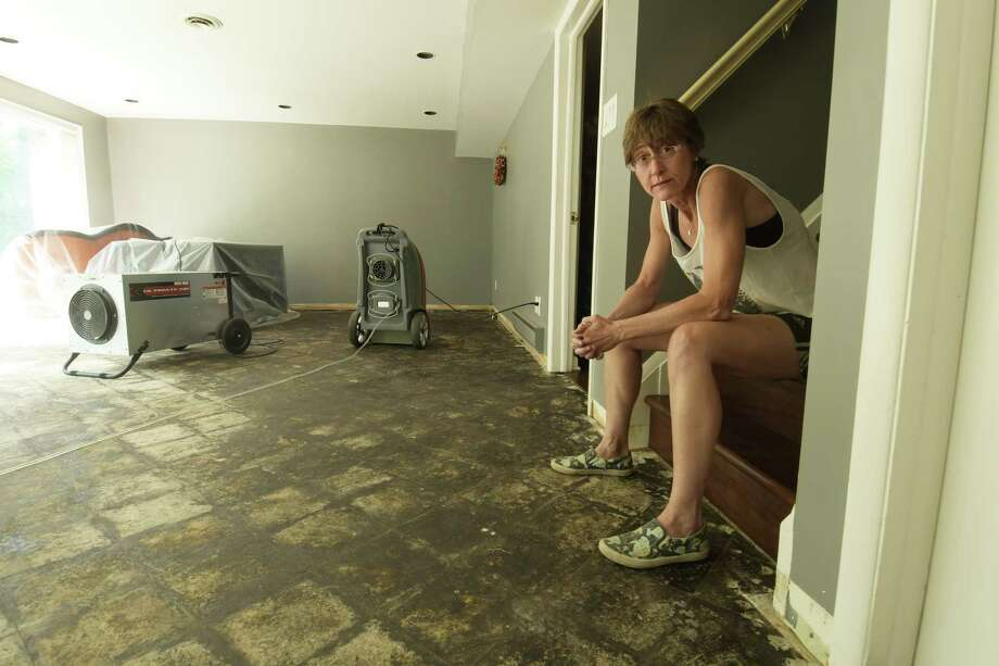 Stephanie Brown in the damaged basement of her home on Marion Avenue, where on July 5th sewage poured out of a toilet in the basement and flooded the space. Photo taken on Thursday, July 12, 2018, in Albany, N.Y.     (Paul Buckowski/Times Union) Photo: Paul Buckowski, Albany Times Union / (Paul Buckowski/Times Union)