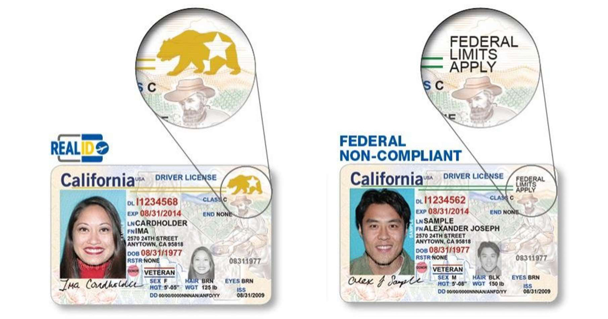 driver license check tickets florida