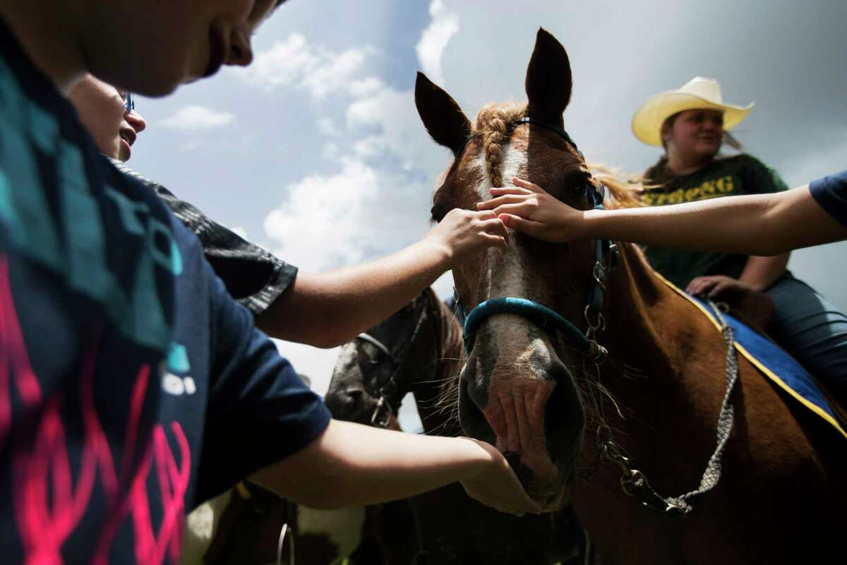 Shiloh the horse is petted by children attending the Santa Fe High School's class of 2008 reunion fundraising event benefiting Santa Fe shooting victims, Sunday, July 15, 2018.