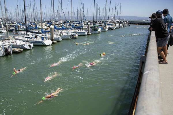 35 swimmers reach their finally destination at McCovey Cove after swimming from the Golden Gate Bridge during the fifth annual Bay Parade in San Francisco, California on Sunday, July 15, 2018.