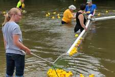 Rain predictions didn't keep many at bay for the Gladwin Arts and Crafts Festival in Gladwin City Park, held in conjunction with the Great Cedar River Duck Race. Hundreds attended the festival and Hospice of Gladwin Area sold out its ducks, an estimated 700. The event drew residents from Gladwin, Midland and other counties. (Tereasa Nims/for the Daily News)