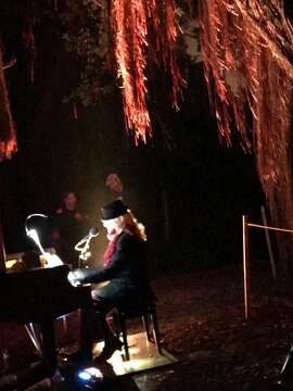 At NightGarden Piano, a performance under a tree