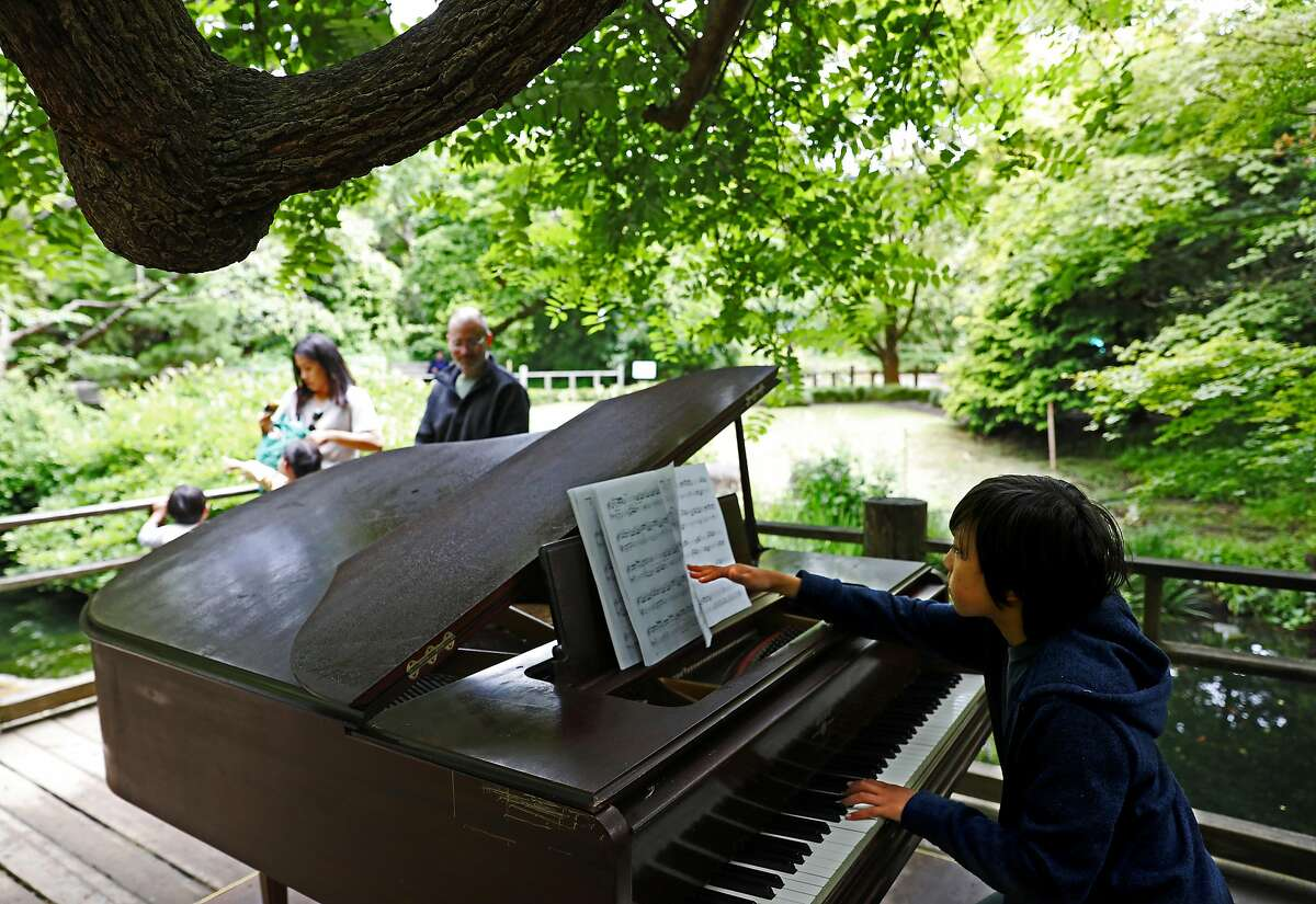 Sebastian Poncin, 10, performs selections by Johann Sebastian Bach and Wolfgang Mozart in the Moon Viewing Garden at the San Francisco Botanic Garden in San Francisco, California on Thursday, July 5, 2018. Poncin is a piano student at LycŽe Francais de San Francisco. A dozen pianos are currently scattered around the grounds as part of the annual Flower Piano event running from now through July 16.