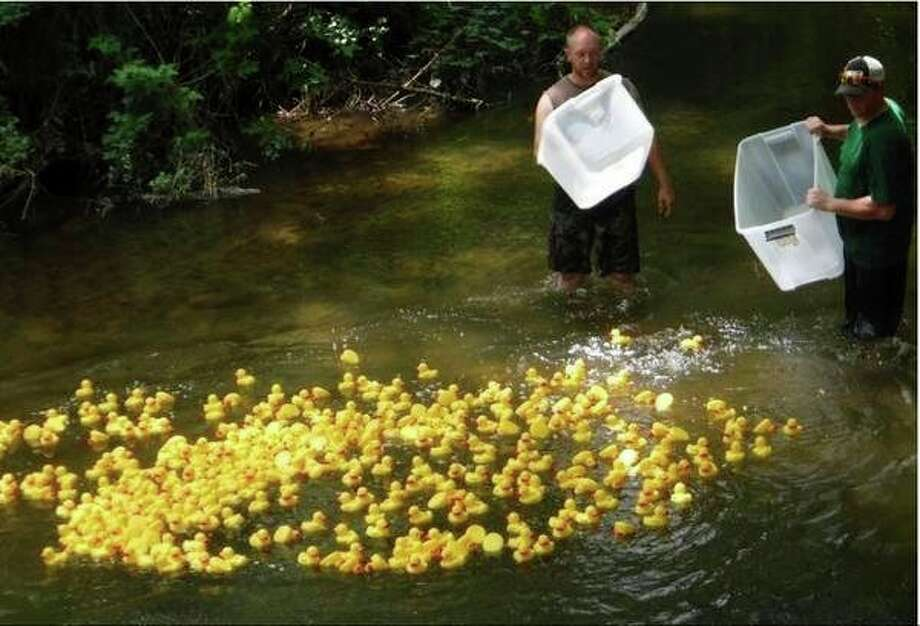Two Hospice of Gladwin Area volunteers release hundreds of ducks for the 2017 race in the lake in Gladwin City Park.The 2018 race begins at 2 p.m. today in the park. (Photo provided)