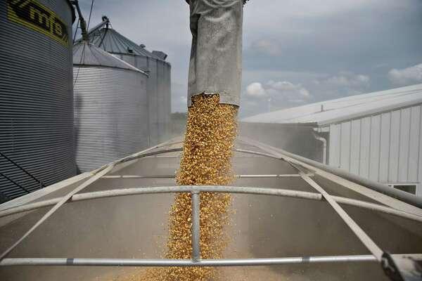 Corn is loaded into a truck on a farm near Walnut, Illinois, on June 19, 2018.