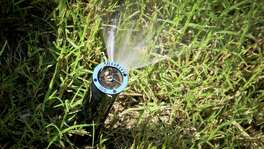 Under Stage 2 limits, landscape watering with an irrigation system, sprinkler or soaker hose is allowed only once a week from 7 to 11 a.m. and 7 to 11 p.m. on your designated watering day, as determined by your address.
