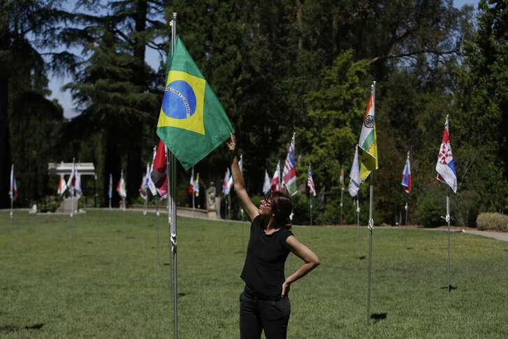Brazilian artist Maril‡ Dardot reaches for her Brazilian flag at her installation of Saudade (Our Flags) at Montalvo on Sunday, July 15, 2018 in Saratoga, Calif.