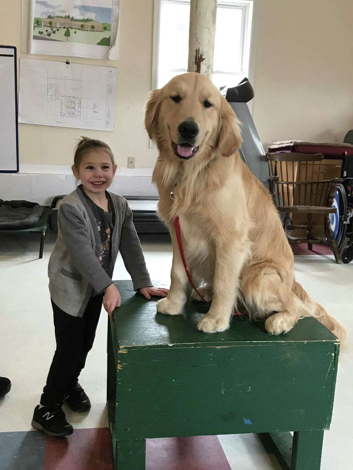 Four new pairs of clients and their service dogs will graduate from a two-week team training session on Wednesday when Educated Canines Assisting with Disabilities members officially cut the ribbon on its new state-of-the-art Canine Education and Wellness Center at 149 Newfield Road in Winsted.