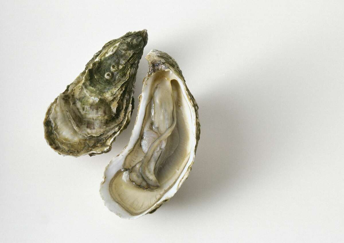 'A 71-year-old man died after consuming flesh-eating bacteria on an oyster, Florida health officials confirmed Wednesday.