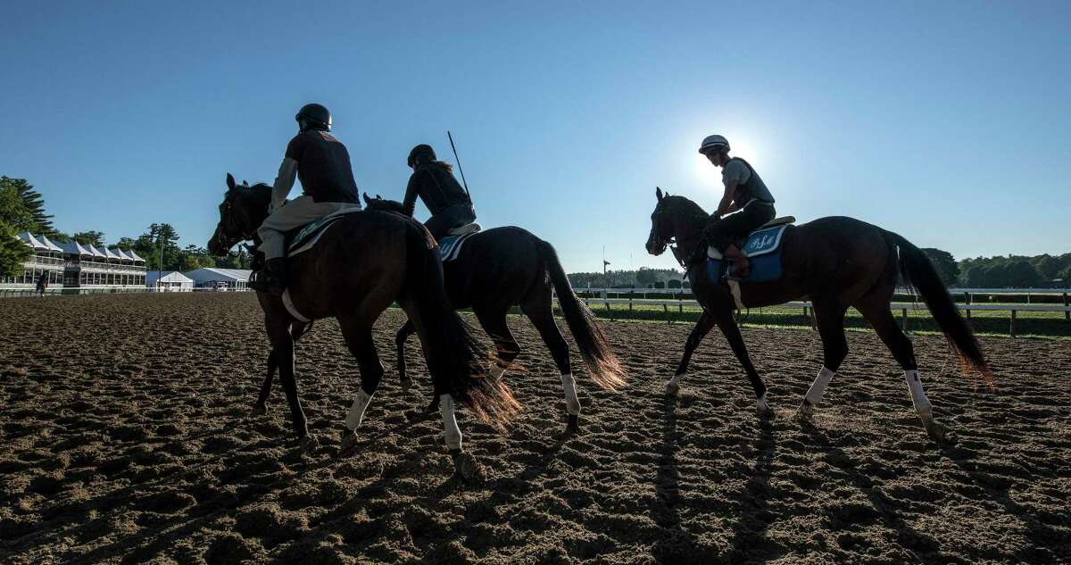 Opening day of the 2018 meeting of the Saratoga Race Course on Friday has brought hundreds of thoroughbreds back to the track Thursday July 19, 2018 in Saratoga Springs, N.Y. (Skip Dickstein/Times Union)