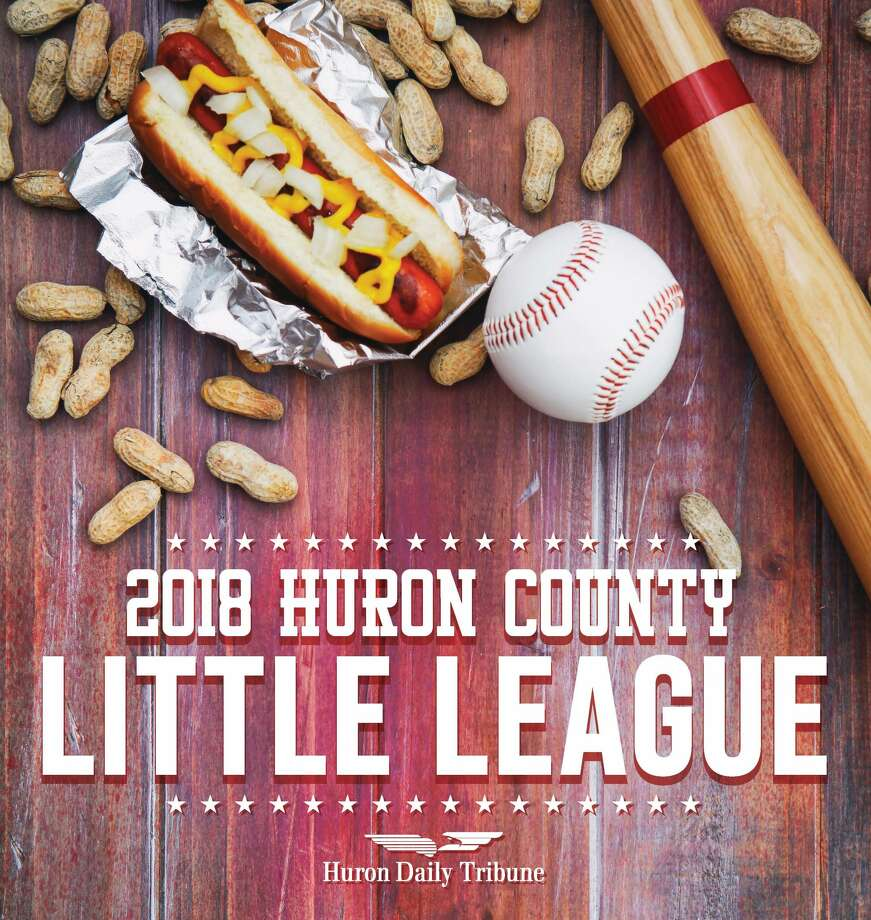 2018 Huron County Little League Yearbook Photo: HDT