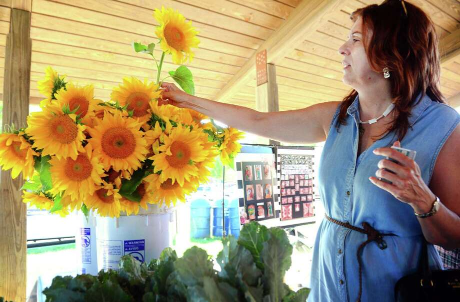 Laura Betlow, of Milford, picks out a sunflower from the Massaro Farm in Woodbridge booth at the Walnut Beach Farmers Market in Milford on Thursday, July 19, 2018. The market is sponsored by the Walnut Beach Arts and Business Association (WABABA). The market is held every third Thursday until October from 4 p.m. to 7 p.m. Photo: Christian Abraham / Hearst Connecticut Media / Connecticut Post
