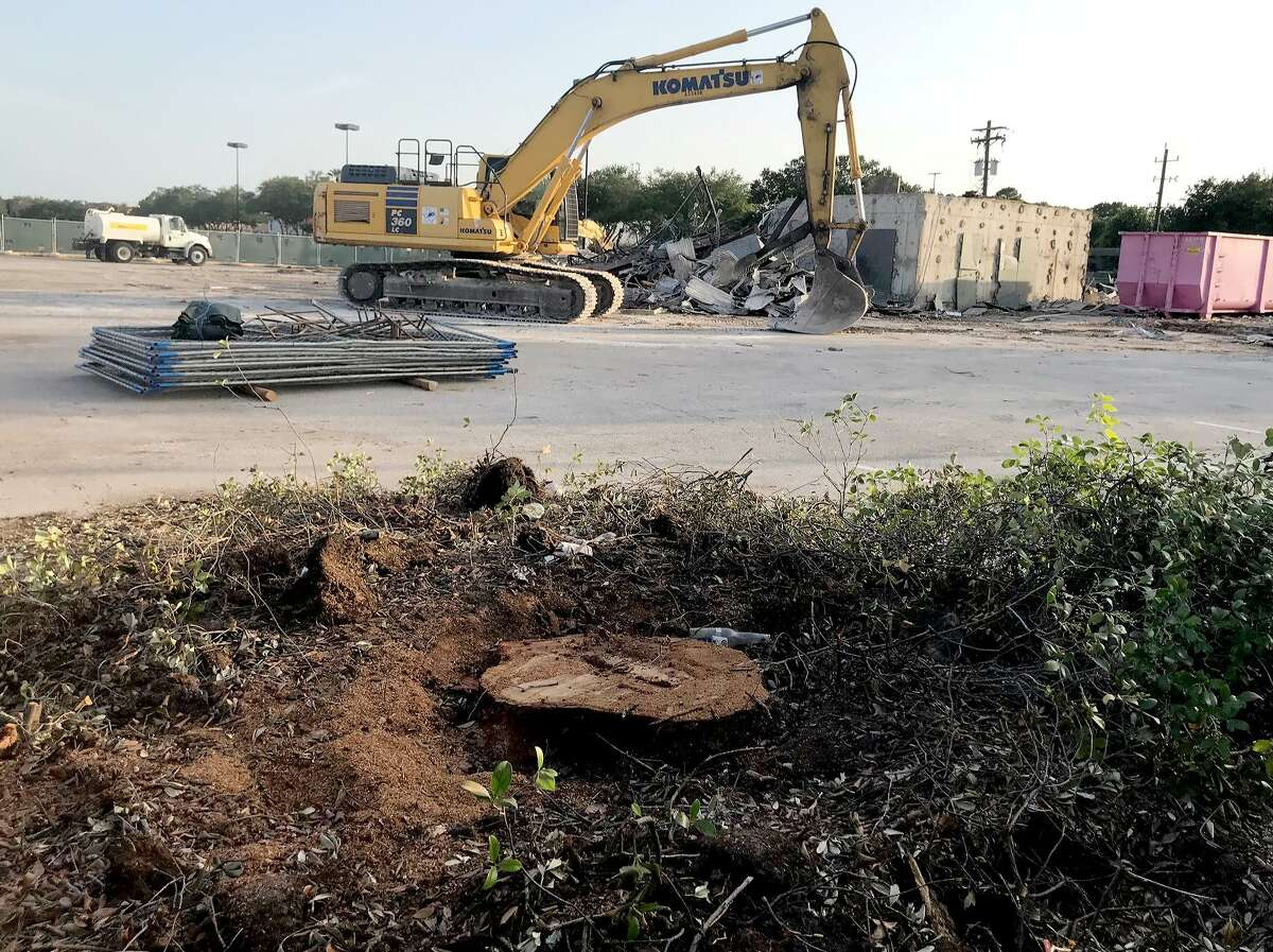 """Only a stump remains where the ?""""Hero Tree,?"""" which was dedicated to honor Capt. Gary Herod in 1961, was cut down in Meyerland Plaza on Tuesday, July 17, 2018."""