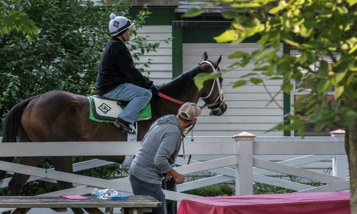 A racing patron sets up his picnic table for Opening Day as a horse going out for training passes by at the Saratoga Race Course Friday July 20, 2018 in Saratoga Springs, N.Y. (Skip Dickstein/Times Union)