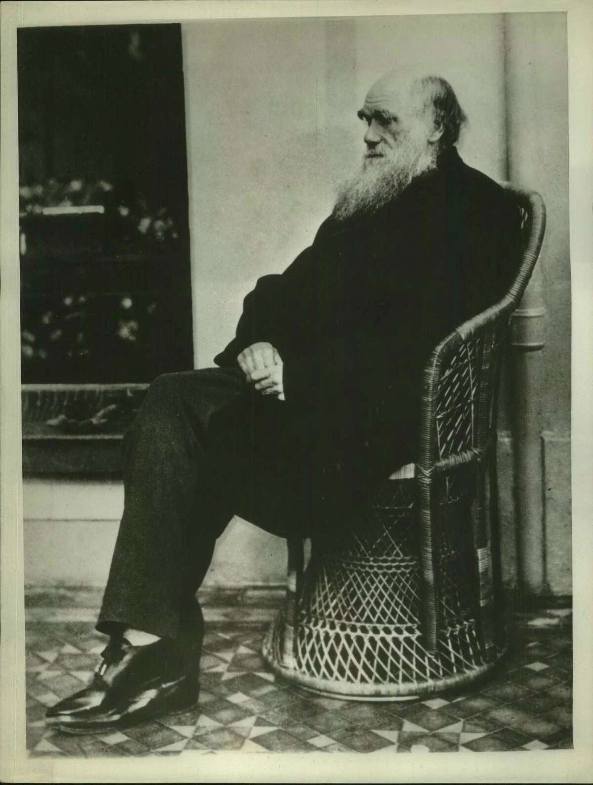 """Charles Darwin's """"The Origin of Species,"""" published about 100 years ago, expounded the theory of evolution. Creationists continue to insist it isn't proven, final science."""