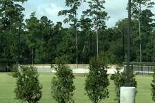 This photograph shows the recently planted wax myrtle shrubs at St. Anthony of Padua Catholic Church in The Woodlands. Church and township officials have confirmed the planting met a mid-July deadline imposed by the Development Standards Committee in early June. These were planted between the St. Teresa area and the church sports field.