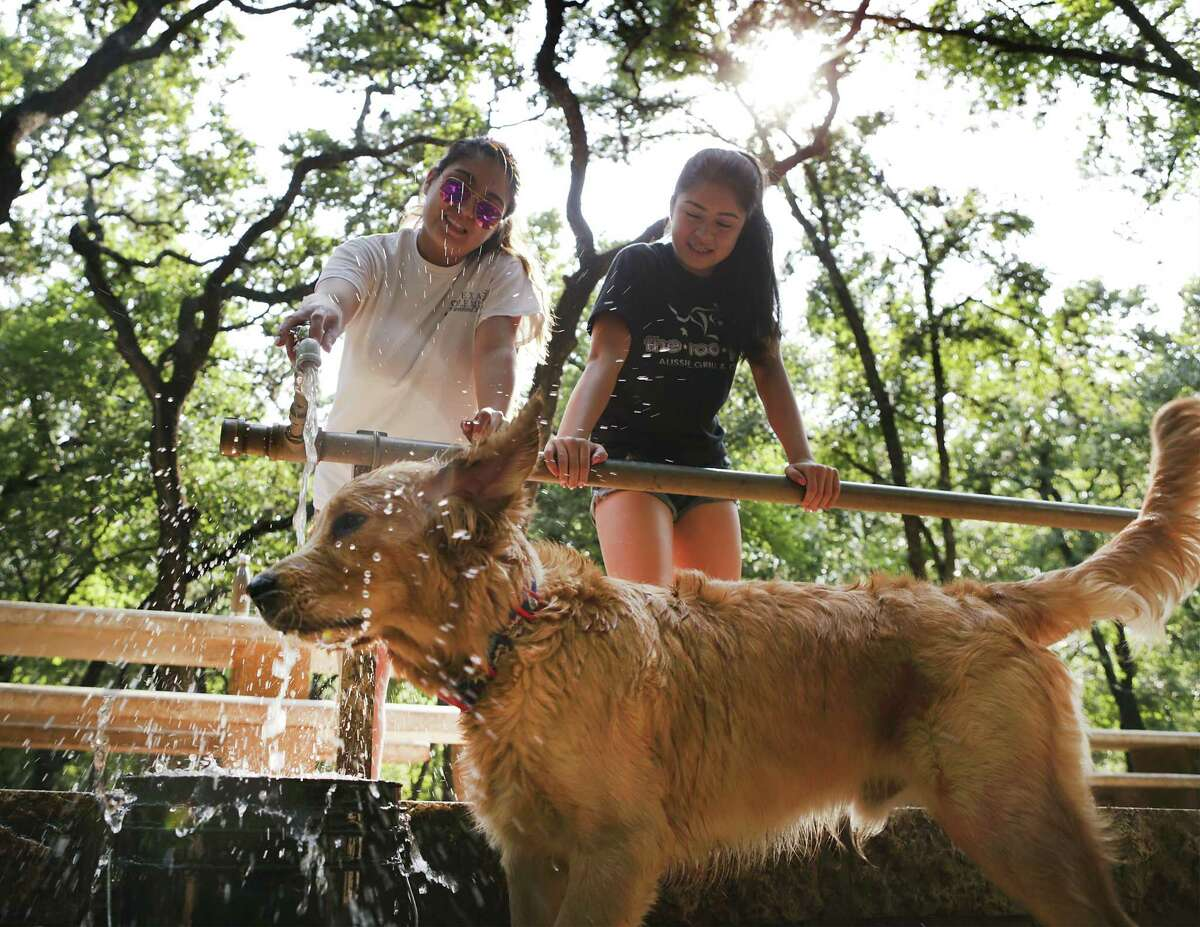"""Kristian Martinez (left0, and her sister Gabriela Martinez water down their 7-month-old golden retriever """"Winston"""" at Hardberger Park on Friday, June 23, 2017 after a hot run in the dog park."""