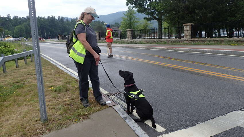 Karen Reynolds, president of Environmental Canine Services, get an alert from her dog, Remi, a mixed breed black Lab, that there is the scent of human fecal bacteria at a storm drain that goes into the lake.