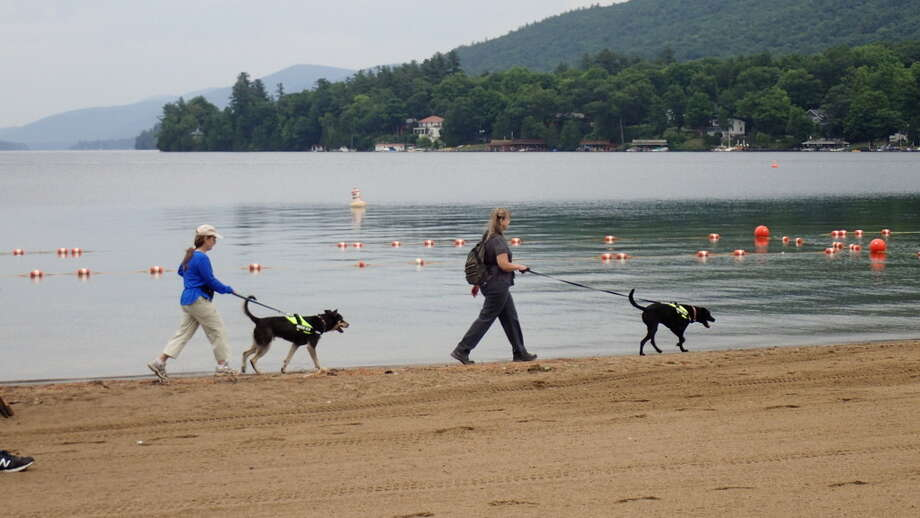 Karen Reynolds and Laura Suomi-Lecker, of Maine-based Canine Environmental Services, take Remi and Kai along Million Dollar Beach in Lake George. Photo: Picasa, Provided By Lake George Association