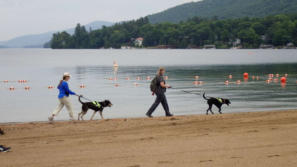 Karen Reynolds and Laura Suomi-Lecker, of Maine-based Canine Environmental Services, take Remi and Kai along Million Dollar Beach in Lake George.